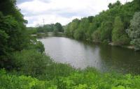 Рыболовный рай