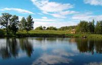 Сафари Парк Лесные Угодья