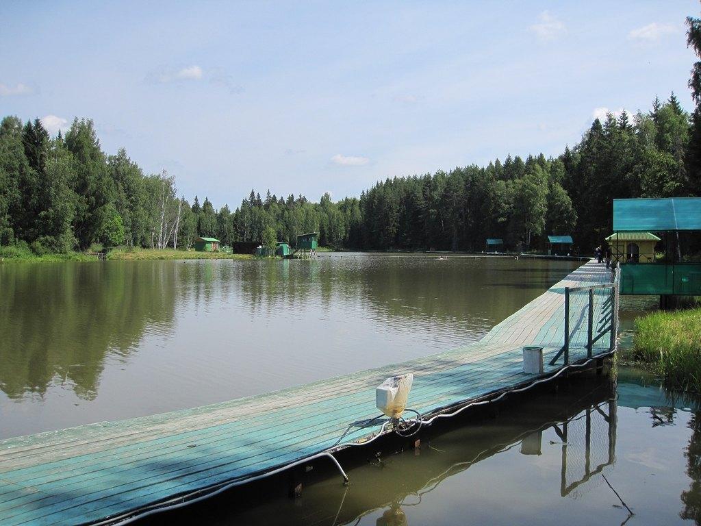 рыбалка в лесу московская область
