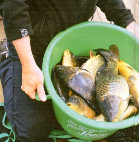 рыбалка на карпа
