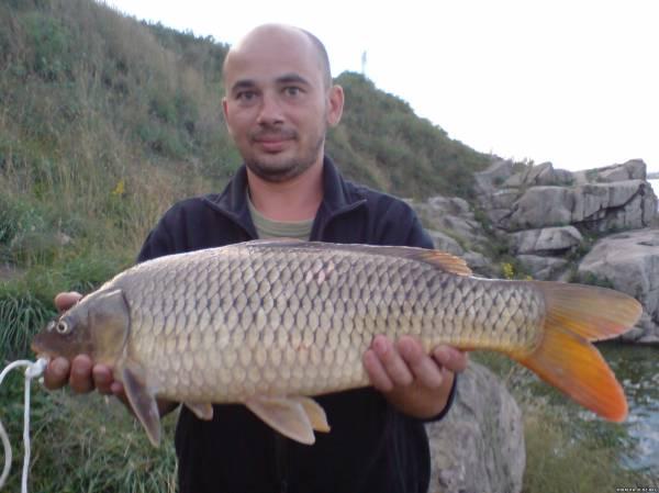 активатор клева для рыбалки минск