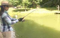 рыбалка в Ольгово