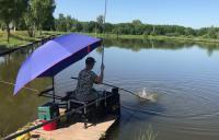 рыбалка в Петряихе