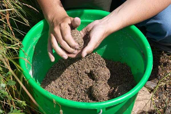 Подкормка для плотвы своими руками летом