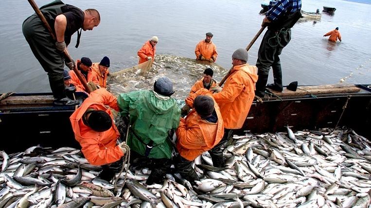владивосток рыболовная компания эльбрус