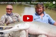 два рыбака держат огромную панцирную щуку