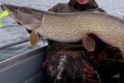 рыбачка щука Рузское водохранилище лодка