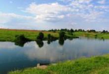алешинский пруд