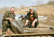 Рыболовная база Дельта