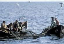 Рыбалка на Чудском озере Источник: http://lovitut.ru/node/add/story 2014 © lovit
