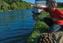 Как прикормить рыбу