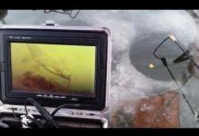 экран камеры подводной съемки на рыбалке