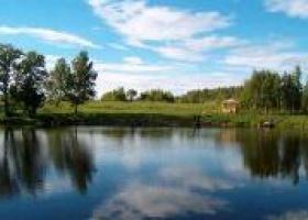 платная рыбалка Сафари Парк Лесные Угодья