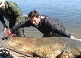 Рыболовная база Волга-Волга