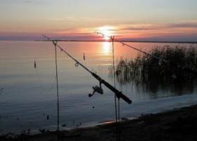 Рыбалка в мае в Ленинградской области