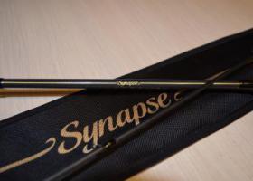 Favorite Synapse
