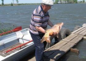 Платная рыбалка в Самаре