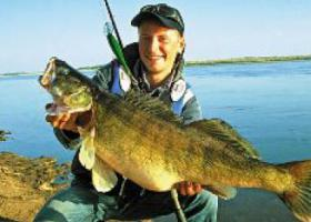 рыбак на берегу с огромным судаком в руках