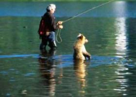 рыбак в воде рядом с медвежонком