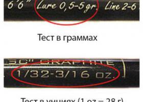 надписи на бланке