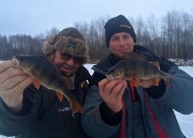 рыбаки с окунями в Чернигове