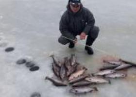 платная рыбалка Лагуна в Еганово