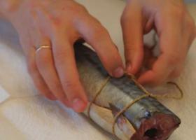 обвязка рыбы для горячего копчения