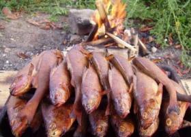 Рыба горячего копчения приготовленная на костре