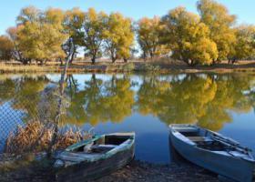 Астраханский пейзаж