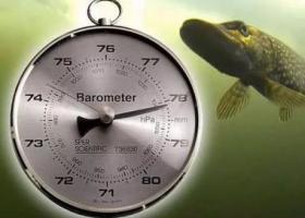 атмосферное давление и рыбалка