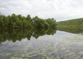 прикормка для реки дон