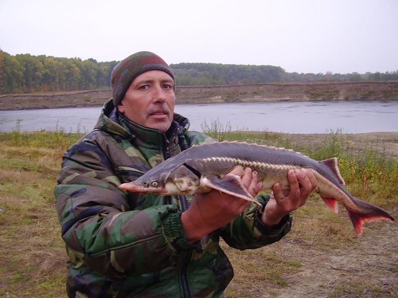 чем ловить рыбу в реках башкирии