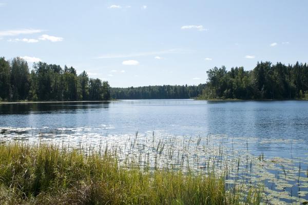снять дом для рыбалки на озере стерж
