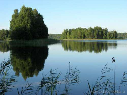 озера псковской области для рыбалки