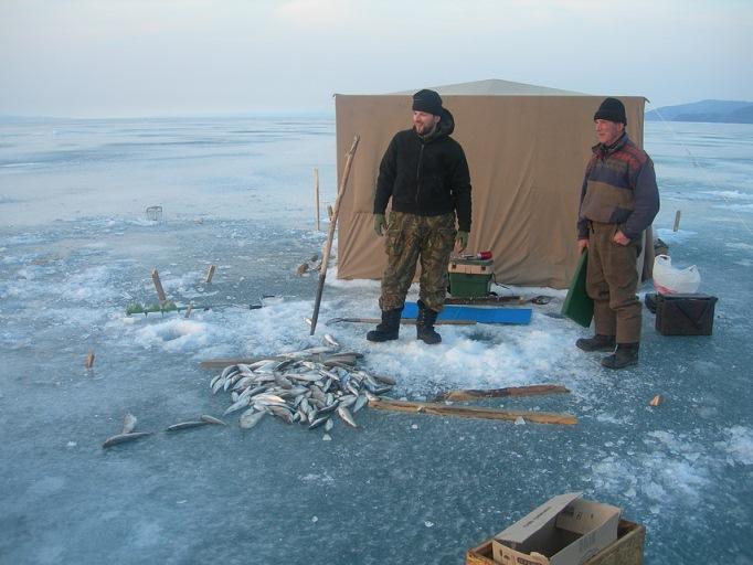 на что ловят рыбу на байкале