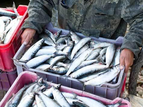 рыбалка в кабанском заказнике