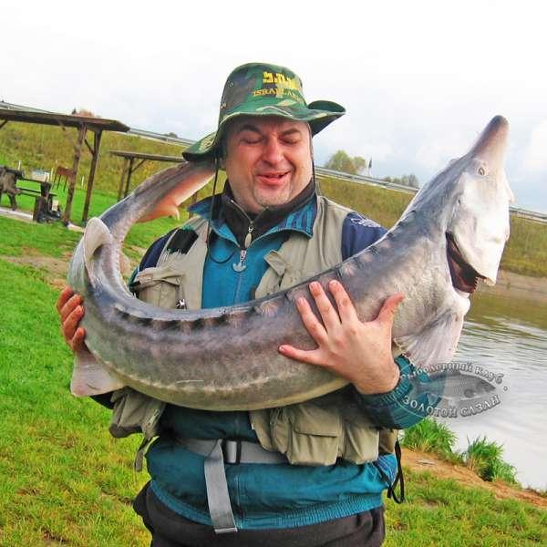 рыбалка в подольске цена
