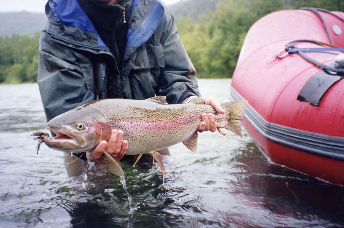 наша рыбалка ловля лосося